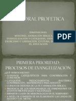 Evaluacin de La Pastoral Proftica