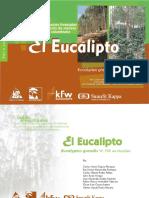 eucalipto.pdf