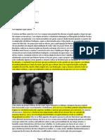 Boca de ouro.pdf