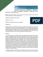 Partes Vargas Pizarro, Severo y Otros c Servicio de Evaluación Ambiental s Medio Ambiente Libre de Contaminación - Recurso de Protección