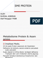 Metab Protein 1
