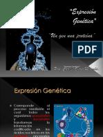 transcripcin-090512111849-phpapp02