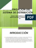 CARACTERIZACIÓN DEL SISTEMA DE DISTRIBUCIÓN.pptx