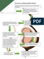 Evolucion Historica de La Ginecoobstetricia