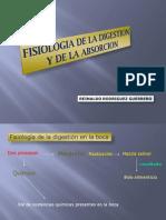 Fisiologia de Gastrointestinal
