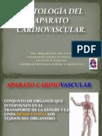 Histología Del Aparato Cardiovascular 2009-2010