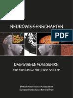 Das_Wissen_vom_Gehirn_-_IBRO (1).pdf