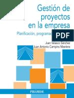 Gestion de Proyectos en La Empresa - Planificacion, Programacion y Control