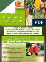 Fitoterapia No SUS