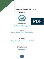 353427761-Evaluacion-de-La-Inteligencia-Trabajo-Final.docx