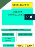 Aspectos Organizacionales Adm y Vig Control Debido Proceso GSandoval