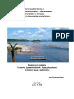 2007_IvaniFerreiradeFaria.pdf