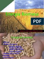 energabiomasa-091201103629-phpapp02