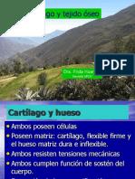Clase de Histología Del Cartílago y Hueso
