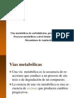 1.4-Vias-metabolicas.ppt