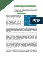 William Fernandez Biologia