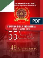 Programa Cip 2017 Oficial
