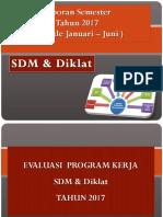 Laporan Tahunan Sdm 2017 ( Ok )