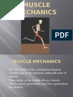 Muscle Mechanicsb