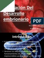 desarrolloembrionario-120426091616-phpapp01