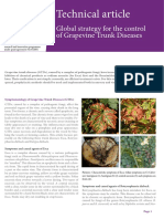 Global strategy for control of grapevine trunk diseases