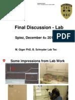 Discussion Swiss Lab