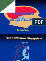2.Transmisión Sináptica 17-II