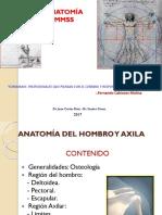 1. Anatomía Del Hombro y Axila