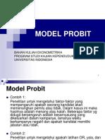 Model Probit Demografi