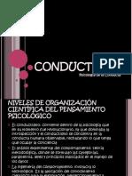 conductismo1-1196900367190566-2