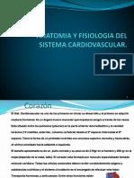 ANATOMIA Y FISIOLOGIA DEL APARATO CARDIOVASCULAR.ppsx