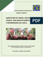 INJERTOS-DE-SANDÍA.pdf