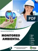 Brochure Monitoreo Virtual -2017-II