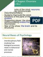 neuro 1 17-18