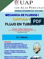 5. Flujo en Tuberias