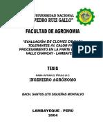 EVALUACIÓN DE CLONES DE PAPA TOLERANTES AL CALOR PARA PROCESAMIENTO EN KLA PARTE BAJA DE VALLE CHANCAY LAMBAYEQUE.pdf