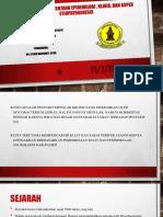 PPT Tugas Jurnal Kulit Leprosy