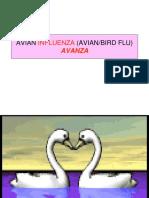9avian Flu