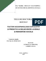 gavrilut_brustur_gabriela_ro.pdf