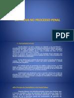 Da Prova No Processo Penal