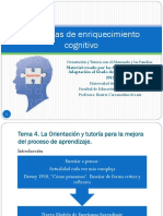 Programas_t4.pdf ENRIQUECIMIENTO INSTRUMENTAL.pdf
