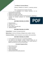 Informe de Fisiologia Renal