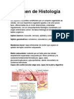 Ultimo de Histologia Con Imagenes