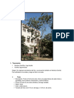 PLANTA  6.docx