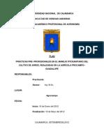 PLAN-DE-PRACTICAS-PRE-PROFESIONALES-EN-EL-CULTIVO-DE-ARROZ.docx