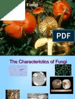 Intro to Fungi Presentation