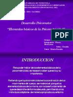 presentaciondepsicomotricidad-