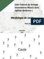 01 Morfologia Vegetal Caule Prova