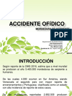 Accidente.ofidico