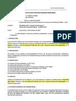 Informe 1 - planefa